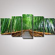 Reprodukce fotografií Krajina Volný čas Romantické Botanický motiv Architektura Fotografie Cestování Moderní,Pět panelů Horizontální