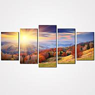 Krajina Zátiší Volný čas Květinový/Botanický motiv Moderní Realismus,Pět panelů Plátno Horizontální Grafika Wall Decor For Home dekorace