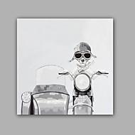 Kézzel festett Absztrakt / Állat Festmények,Modern / Klasszikus Egy elem Vászon Hang festett olajfestmény For lakberendezési