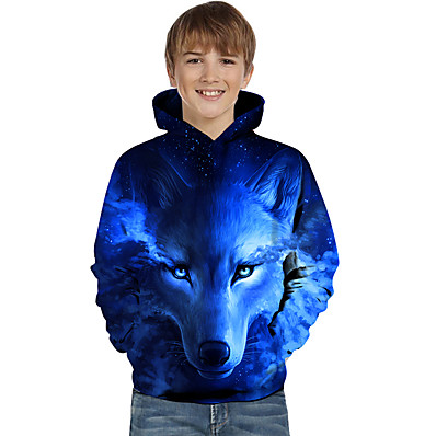 cheap Boys' Clothing-Kids Toddler Boys' Active Basic Wolf Geometric Color Block Animal Print Long Sleeve Hoodie & Sweatshirt Blue