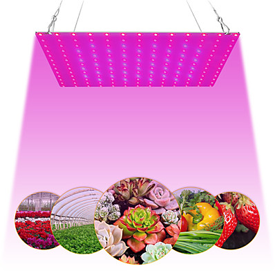 cheap Indoor Lighting-1pc 81LEDs 169 LEDs Indoor LED Grow Light Plant Growing Lamp Red Blue Full Spectrum For Indoor Hydroponic Plant
