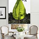 זול קישוטים לטקס-Modern Art Style Green Leaf Roller Shade