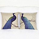 cheap Cushion Sets-2 pcs Cotton/Linen Pillow Case, Pattern Traditional/Classic