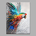 cheap Rolled Canvas Prints-Oil Painting Hand Painted - Animals Modern Canvas