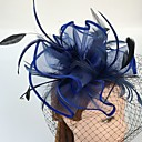 cheap Party Headpieces-Feather / Net Fascinators / Birdcage Veils with 1 Wedding / Special Occasion / Casual Headpiece