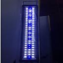 abordables Calentadores y Termómetros de Acuario-Acuarios Acuarios Luz LED Blanco / Azul Ahorro de Energía / Modo 2 Lámpara led 220 V V Metal