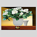 cheap Floral/Botanical Paintings-Oil Painting Hand Painted - Still Life Classic Canvas