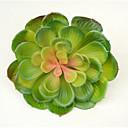 olcso Mesterséges növények-Művirágok 1 Ág Stílusos Succulent növények Asztali virág
