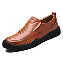 זול נעלי בד ומוקסינים לגברים-בגדי ריקוד גברים עור אביב / סתיו נוחות נעליים ללא שרוכים שחור / חום בהיר / חום כהה