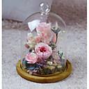 זול אספקה למסיבות-חתונה יום הולדת מצדדים ומתנות מפלגה - מתנות קישוטים פרח פרחים מיובשים זכוכית רומנטיקה