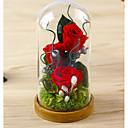 זול מתנות לחתונה-חתונה מזל טוב מצדדים ומתנות מפלגה - מתנות קישוטים עלי כותרת פרחוני פרח פרחים מיובשים ניצן של פרח נושאי גן חופשה רומנטיקה פנטזיה חתונה