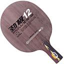 abordables Tenis de mesa-DHS® POWER.G12 CS Ping Pang/Tabla raquetas de tenis Listo para vestir Duradero De madera Fibra de carbon 1