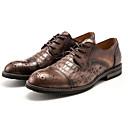 זול מגפיים לגברים-בגדי ריקוד גברים עור נאפה Leather / עור אביב / סתיו נוחות נעלי אוקספורד שחור / קפה