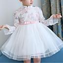 זול שמלות לבנות-שמלה כותנה אביב סתיו שרוול ארוך יומי ליציאה פרחוני פרח רקמה הילדה של חמוד פעיל סגנון סיני לבן ורוד מסמיק