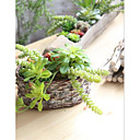 cheap Artificial Plants-Artificial Flowers 1 Branch Ordinary / Pastoral Style Succulent plants Tabletop Flower