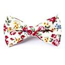 cheap Men's Oxfords-Unisex Party / Basic Bow Tie - Print Bow