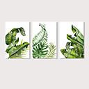 hesapli Tablolar-Boyama Gerdirilmiş Tuval Resimleri - Botanik Çiçek / Botanik Modern Üç Panelli Sanatsal Baskılar