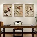 זול אומנות ממוסגרת-דפוס אומנות ממוסגרת סט ממוסגר - חיות פוליסטירן איור וול ארט