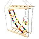 זול אביזרים לציפורים-ציפור מוטות וסולמות ידידותי לחיות מחמד ציפור עץ 23 cm