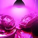 povoljno LED Grow Lights-2pcs 6 W 3000 lm 60 LED zrnca Spectrum Total Uzgoj rasvjetnih tijela 85-265 V Stakleno povrće