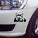 זול רכב הגוף קישוט והגנה-מדבקה לרכב חתול מצמרר מדבקה לרכב מצחיקה ויניל מדבקות גרפיקה לאמנות