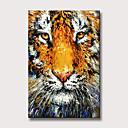 povoljno Slike sa životinjskim motivima-Hang oslikana uljanim bojama Ručno oslikana - Sažetak Životinje Moderna Bez unutrašnje Frame