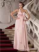 Χαμηλού Κόστους Βραδινά Φορέματα-Ίσια Γραμμή Ένας Ώμος Μακρύ Σιφόν Επίσημο Βραδινό Φόρεμα με Πιασίματα / Λουλούδι με TS Couture®