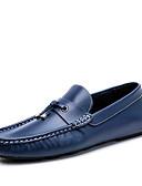 voordelige Meisjeskleding-Heren Schoenen Leer Lente / Herfst Comfortabel Loafers & Slip-Ons Wandelen Bruin / Blauw / koffie / Kwastje