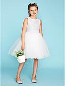 preiswerte Kleider für die Blumenmädchen-Ballkleid Knie-Länge Blumenmädchenkleid - Spitze / Tüll Ärmellos Rundhalsausschnitt mit Schleife(n) durch LAN TING BRIDE®