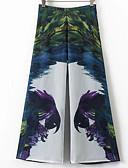 זול מכנסיים לנשים-בגדי ריקוד נשים פרחוני דוגמת פרוות חיה רגל רחבה מכנסיים גיאומטרי דפוס