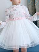 baratos Vestidos Longos-Menina de Vestido Diário Para Noite Floral Flor Bordado Primavera Outono Algodão Manga Longa Fofo Activo Temática Asiática Branco Rosa