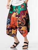 ieftine Pantaloni Bărbați si Pantaloni Scurți-Bărbați Mărime Plus Size In Harem / Picior Larg Pantaloni Geometric