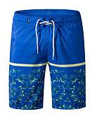 povoljno Muške duge i kratke hlače-Muškarci Osnovni Kratke hlače Hlače - Cvjetni print Print Crn / Ljeto / Plaža