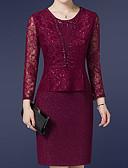 ieftine Rochii de Damă-Pentru femei Sofisticat Mărime Plus Size Pantaloni - Mată Dantelă Roșu Vin / Ieșire