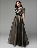 رخيصةأون فساتين حفلات-A-الخط باتو طول الأرض تول حفلة رسمية فستان مع زينة / تطريز بواسطة TS Couture®