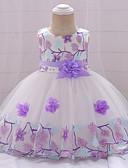 Χαμηλού Κόστους Φορέματα για κορίτσια-Μωρό Κοριτσίστικα Ενεργό / Βασικό Πάρτι / Γενέθλια Φλοράλ Δαντέλα Αμάνικο Ως το Γόνατο Βαμβάκι / Πολυεστέρας Φόρεμα Ανθισμένο Ροζ