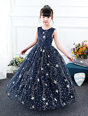 Χαμηλού Κόστους Λουλουδάτα φορέματα για κορίτσια-Γραμμή Α Μακρύ Φόρεμα για Κοριτσάκι Λουλουδιών - Τούλι / Με πούλιες Αμάνικο Με Κόσμημα με Κέντημα / Σε επίπεδα / Παγιέτες με LAN TING Express