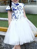 levne Print Dresses-Děti Dívčí Vintage / Čínské vzory Květinový / Patchwork Síťka / Výšivka Krátký rukáv Bavlna / Polyester Šaty Vodní modrá