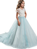 זול שמלות לילדות פרחים-נסיכה עד הריצפה / ארוך שמלה לנערת הפרחים  - תחרה / טול שרוולים קצרים עם תכשיטים עם עלי כותרת / אפליקציות / תחרה על ידי LAN TING Express