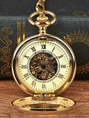 cheap Pocket Watches-Men's Pocket Watch Mechanical manual-winding Gold Casual Watch Large Dial Analog Casual Skeleton - Gold