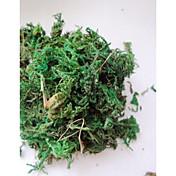 decoração miniascape musgo verde (1pcs)