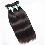 Tejidos Humanos Cabello Cabello Malayo Recto 3 Piezas los tejidos de pelo