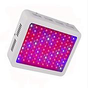 Luces LED para Crecimiento Vegetal Blanco Fresco Rojo Azul 1 pieza