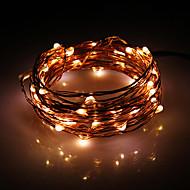 5M 50-LED lämmin valkoinen Copper Wire stringit Fairy Light AC adapteri (100-240V)