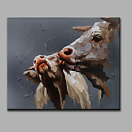 Single Modern Abstract Pure Hand Draw Ready To Hang Decorative The Pig Oil Painting