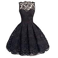 Kadın's sofistike A Şekilli Dantel Elbise - Solid, Dantel Arkasız Kayık Yaka Diz-boyu