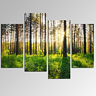 抽象画 風景 ロマンチック ポップアート ファンタジー カジュアル 写真 現代風 4枚 横式 プリント 壁の装飾 For ホームデコレーション