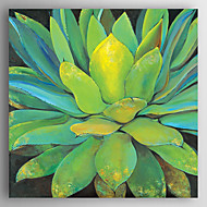 Oil Painting a Green Flower Hand Painted Canvas with Stretched Framed