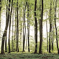 billige Tapet-Trær / Blader Hjem Dekor Moderne Tapetsering, Lerret Materiale selvklebende nødvendig Veggmaleri, Tapet