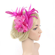 cheap Wedding Headpieces-Feather Net Fascinators 1 Wedding Special Occasion Headpiece